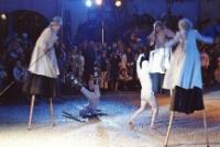 """[25. MFTU 2007 Jelenia Góra - Teatr InZhest """"X-Tradition""""] (fot. 3) [Dokument ikonograficzny]"""