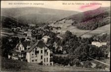 Czerniawa Zdrój - widok ogólny miasta z Czerniawską Kopą i górą Smrek [Dokument ikonograficzny]
