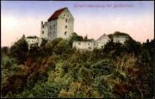 Zamek Świny koło Bolkowa [Dokument ikonograficzny]