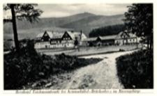 Karpacz - Orlinek na tle Karkonoszy [Dokument ikonograficzny]