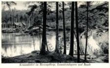 Krummhübel im Riesengebirge, Lomnitztalsperre und Baude [Dokument ikonograficzny]