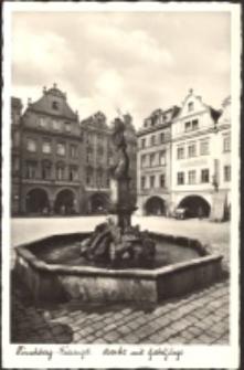 Jelenia Góra - Plac Ratuszowy - fontanna Neptuna [Dokument ikonograficzny]