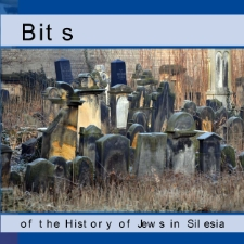 Bits of the History of Jews in Silesia [Dokument elektroniczny]
