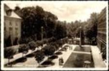 Jelenia Góra - Cieplice - Park Zdrojowy [Dokument ikonograficzny]