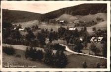 Czerniawa-Zdrój w Górach Izerskich - widok ogólny [Dokument ikonograficzny]