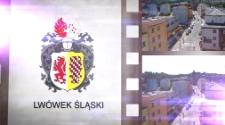 Ratusze polsko-czeskiego pogranicza = Radnice polsko-českého pohraniči. Lwówek Śląski [Film]
