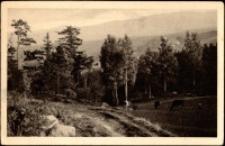 Karkonosze - widok z Rudzianek na rysujące się daleko w tle pasmo gór [Dokument ikonograficzny]
