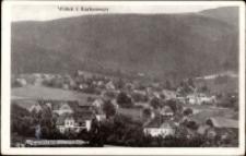 Wojków - panorama miejscowości na tle gór [Dokument ikonograficzny]