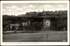 Janowice Wielkie - widok na miejscowość, sanatorium oraz wzgórze z Miedzianką [Dokument ikonograficzny]