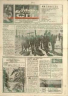 """Wspólny cel : gazeta załogi ZWCH """"Chemitex-Celwiskoza"""" , 1987, nr 35-36 (1044-5)"""