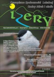 Izery : czasopismo społeczności lokalnej Gminy Mirsk i okolic, 2009, nr 8 (kwiecień)