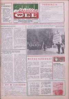 """Wspólny cel : gazeta załogi ZWCH """"Chemitex-Celwiskoza"""", 1988, nr 24 (1069)"""