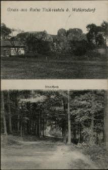 Gruss aus Ruine Talkenstein b. Welkersdorf [Dokument ikonograficzny]