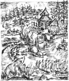 Niedźwiedź [Dokument ikonograficzny]