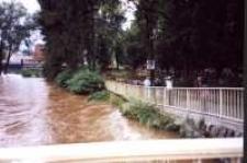 Jelenia Góra - Cieplice - powódź - most i cmentarz [Dokument ikonograficzny]