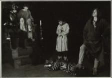 Fatalia błazeńska (fot. 15) [Dokument ikonograficzny]