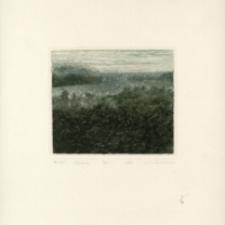 Jezioro [Dokument ikonograficzny]