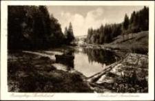 Barcinek - w głębi widoczne Sanatorium [Dokument ikonograficzny]