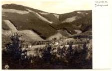 Wilcza Poręba - widok na Dolinę Sowią [Dokument ikonograficzny]
