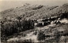 Riesengebirge. Ober - Schreiberhau Waldschlößchen mit Hochstein [Dokument ikonograficzny]