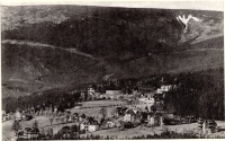Bierutowice - panorama [Dokument ikonograficzny]