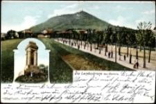 Die Landeskrone bei Görlitz [Dokument ikonograficzny]