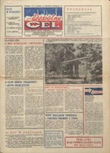 """Wspólny cel : gazeta załogi ZWCH """"Chemitex-Celwiskoza"""", 1985, nr 22 (959)"""