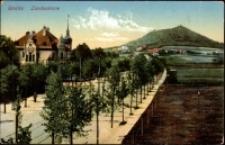 Görlitz. Landeskrone [Dokument ikonograficzny]
