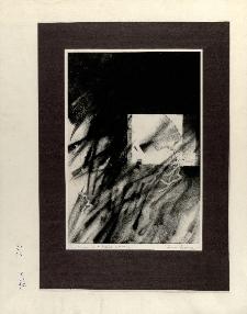 Tachykardia X [Dokument ikonograficzny]