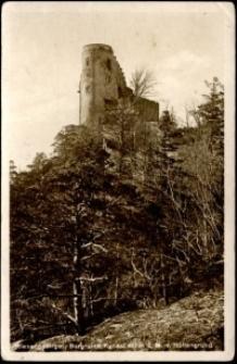 Riesengebirge. Burgruine Kynast 657 m ü. M. v. Höllengrund [Dokument ikonograficzny]