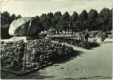 Zgorzelec - Park im. gen. Karola Świerczewskiego [Dokument ikonograficzny]