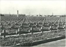 Zgorzelec - Cmentarz Żołnierzy II Armii Wojska Polskiego [Dokument ikonograficzny]