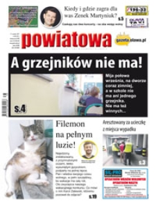 Gazeta Powiatowa - Wiadomości Oławskie, 2017, nr 38