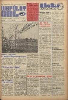 Wspólny cel : gazeta samorządu robotniczego Celwiskozy, 1974, nr 13 (568)