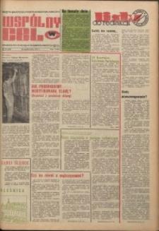 Wspólny cel : gazeta samorządu robotniczego Celwiskozy, 1975, nr 28 (619)