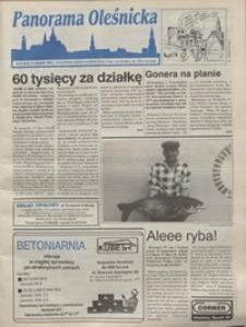 Panorama Oleśnicka: tygodnik Ziemi Oleśnickiej, 1995, nr 31