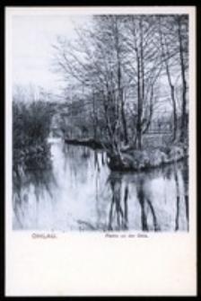Ohlau - Partie an der Ohle [Dokument ikonograficzny]