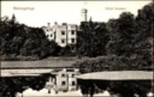 Karpniki - pałac [Dokument ikonograficzny]