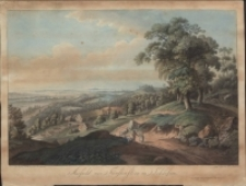 Ansicht von Fürstenstein in Schlesien [Dokument ikonograficzny]