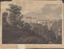 Schloss Fürstenstein bey Freyburg in Schlesien [Dokument ikonograficzny]