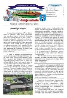 Świebodzice - Dzieje Miasta, 2011, nr 6 (163) [Dokument elektroniczny]