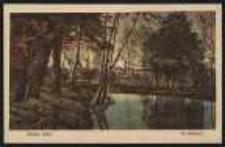 Ohlau – Im Stadtpark [Dokument ikonograficzny]