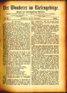 Der Wanderer im Riesengebirge, 1882, nr 13