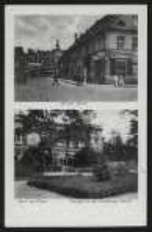 Gruss aus Ohlau – Briegerstraße, Anlagen an der Grottkauer Straße [Dokument ikonograficzny]
