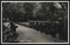 Ohlau – Partie im Park [Dokument ikonograficzny]