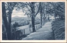 Jelenia Góra - Wzgórze Kościuszki z widokiem na Śnieżkę [Dokument ikonograficzny]