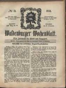 Waldenburger Wochenblatt, Jg. 5, 1859, nr 73
