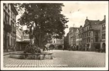 Hirschberg im Riesengebirge. Markt mit Neptunbrunnen [Dokument ikonograficzny]
