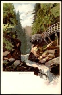 Karkonosze - Wąwóz Kamieńczyka - wg obrazu H. Bahndorfa [Dokument ikonograficzny]