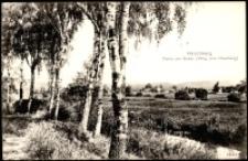 Jelenia Góra - nad Bobrem, droga na Wzgórze Krzywoustego [Dokument ikonograficzny]
